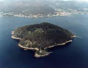 ilha tambo