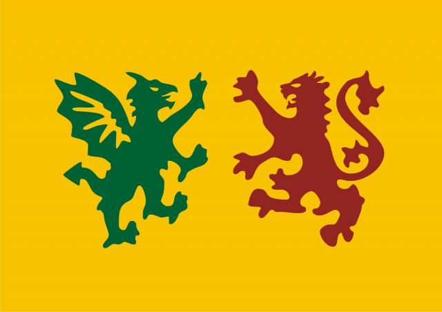 BandeiraSueva