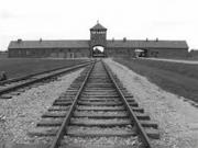 nazis 290