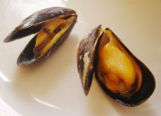 640px Cooked mussels DSC09244