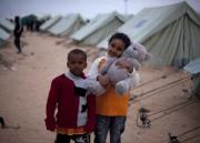 libia despra