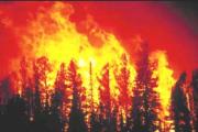 010311_incendio