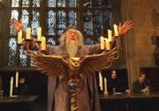 291110_dumbledore